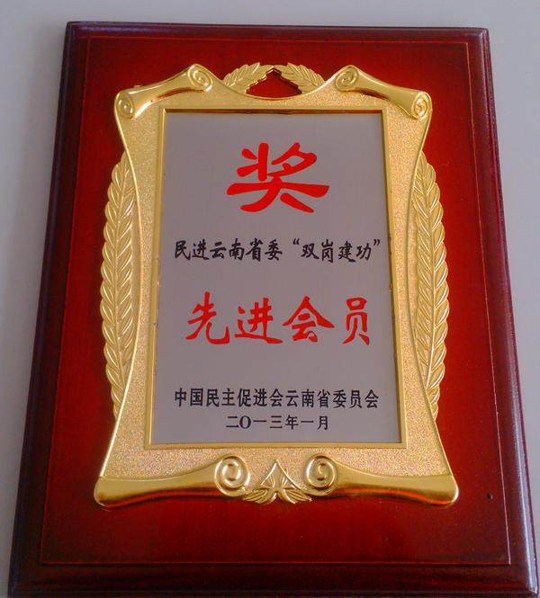 """民进沙龙国际委""""双岗建功""""先进会员"""