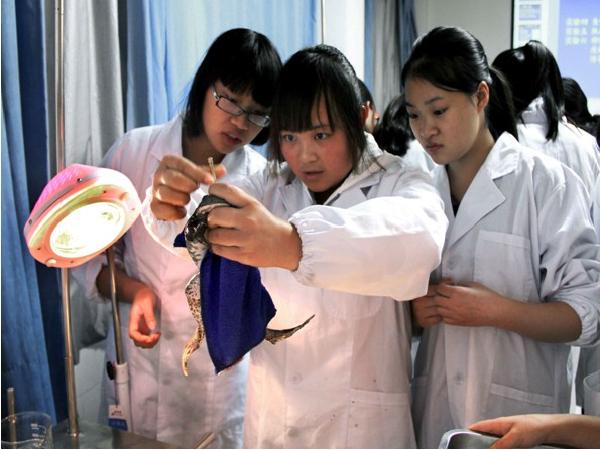机能学实验中心—生理病理药理实训室