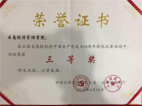 云南省纪念中国共产党成立95周年歌咏比赛三等奖