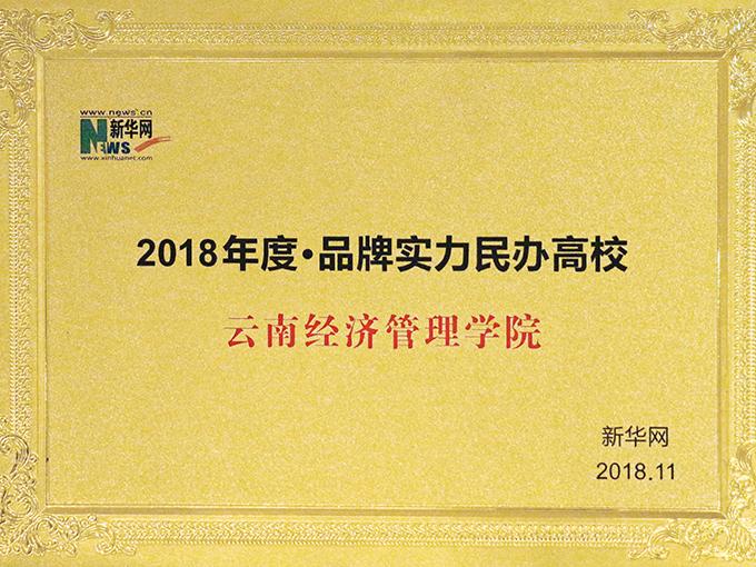 2018年度品牌实力民办高校